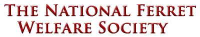 National Ferret Welfare Society